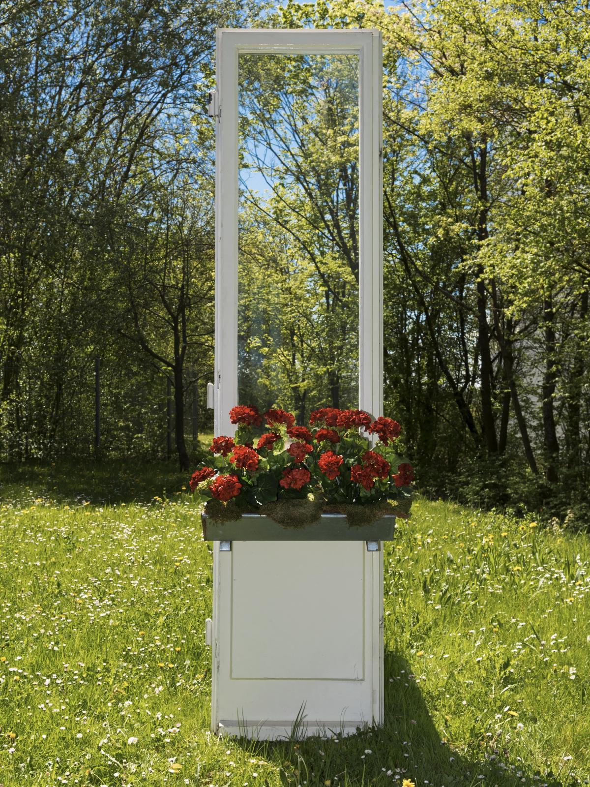 EUROPALMS Geranio rosso 42cm