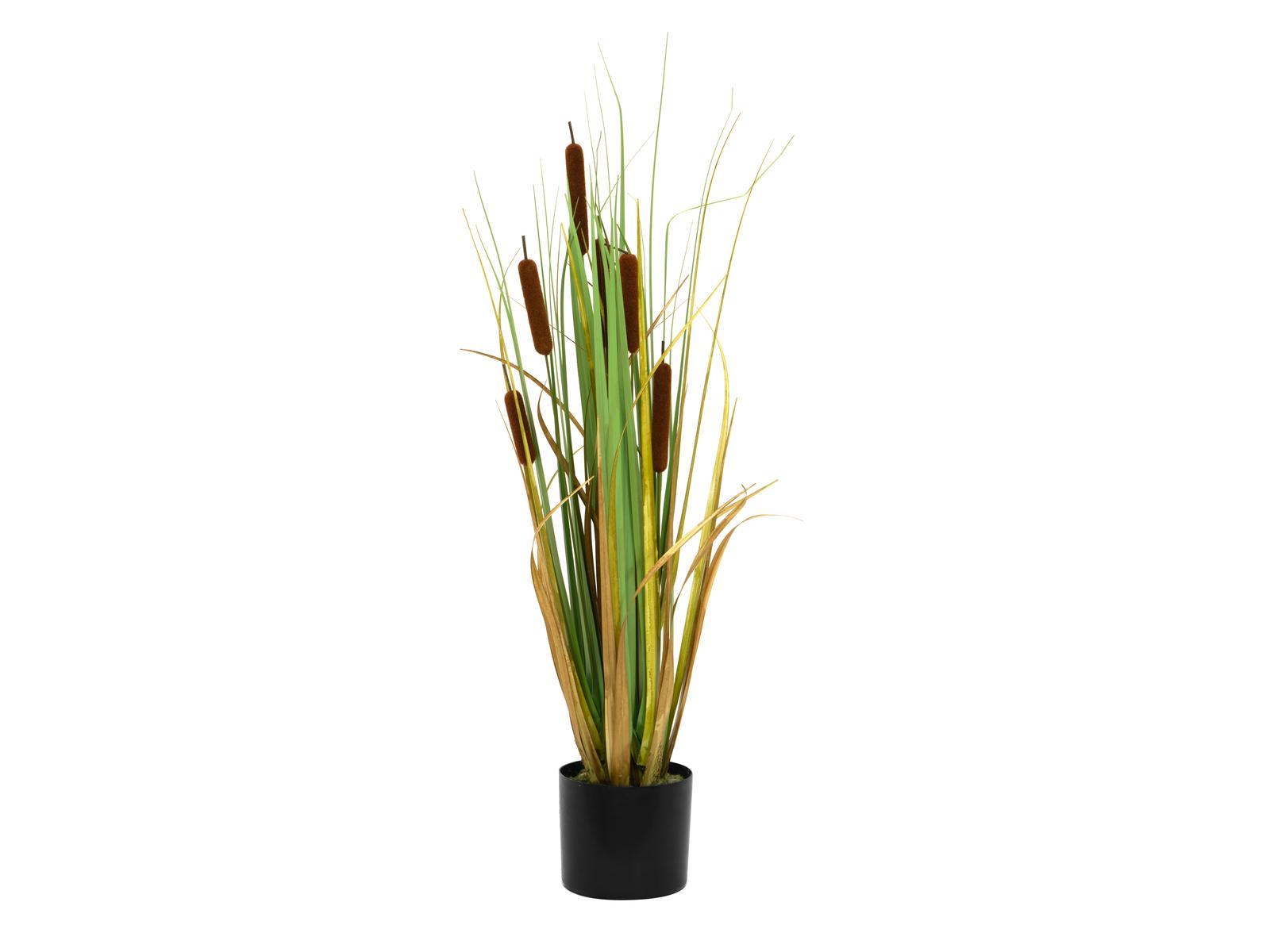 EUROPALMS Giunco di palude, piante artificiali 90cm