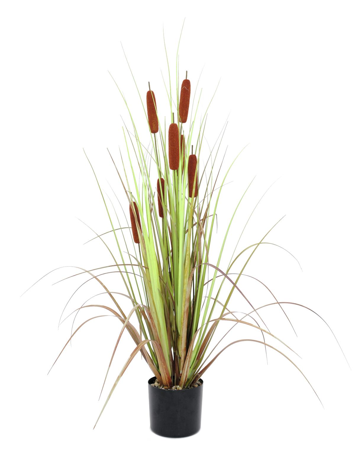 EUROPALMS Rohrkolben, Kunstpflanze, 120cm