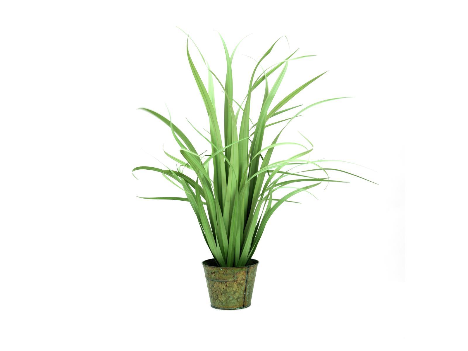 EUROPALMS Yuccabusch, schmale Blätter, künstlich, 80cm