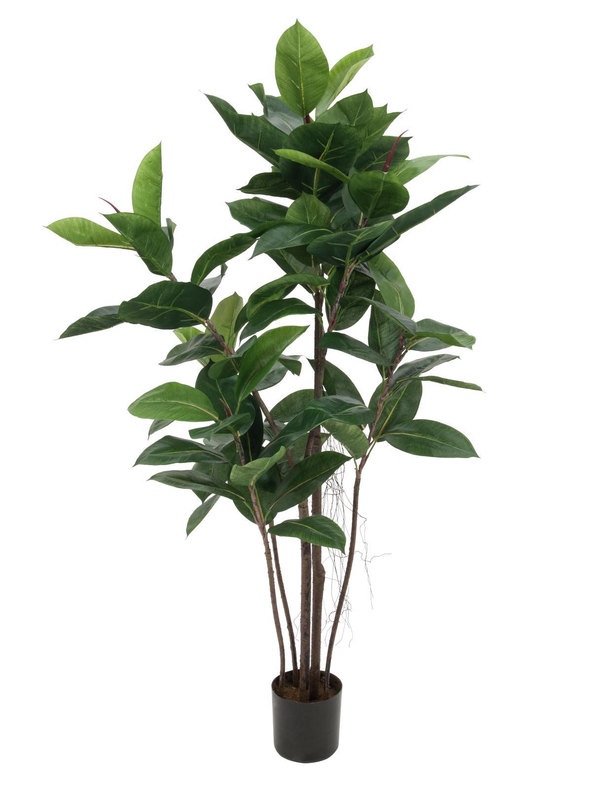 EUROPALMS Gummibaum, Kunstpflanze, 120cm