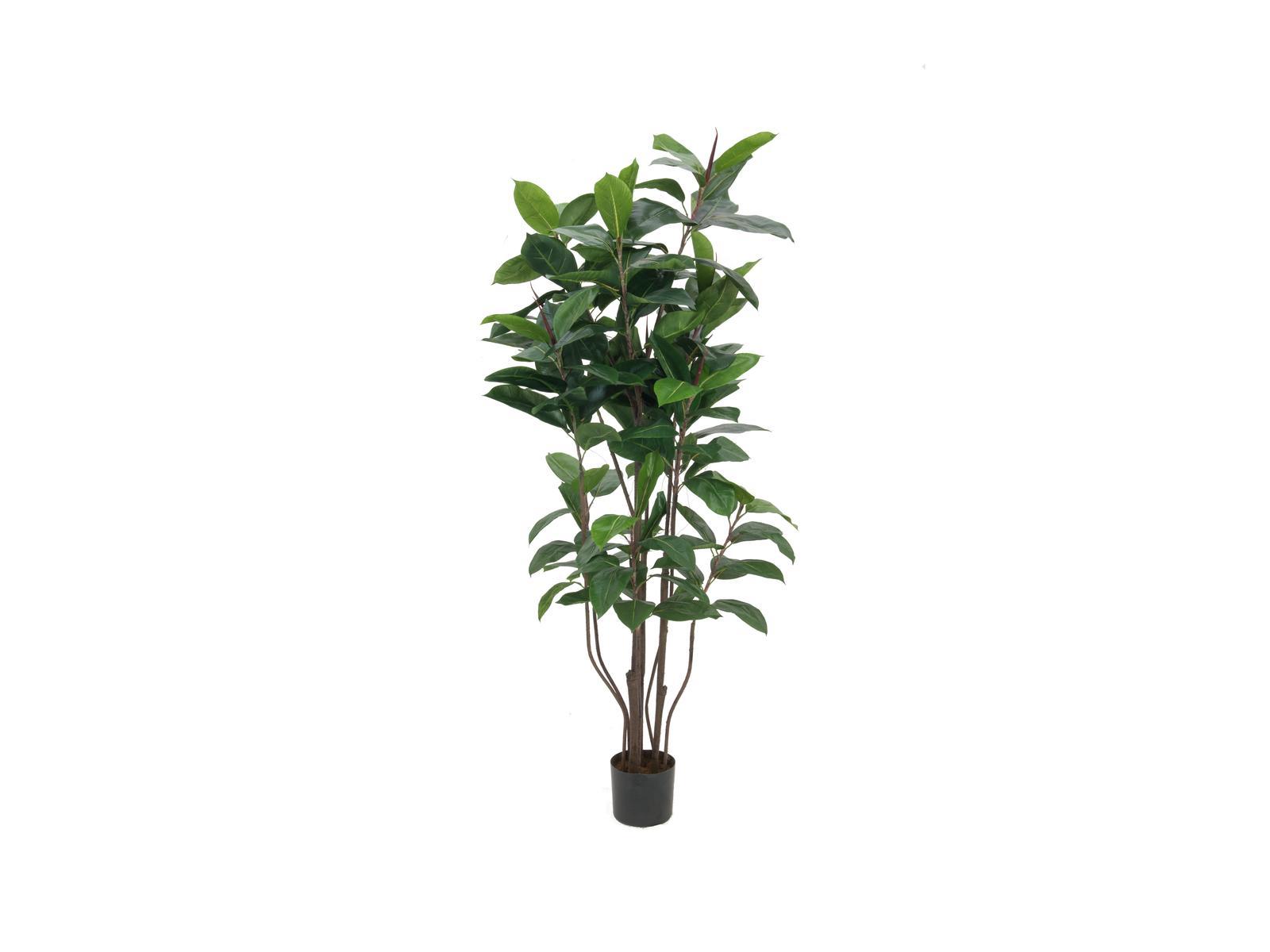 EUROPALMS Gummibaum, Kunstpflanze,150cm
