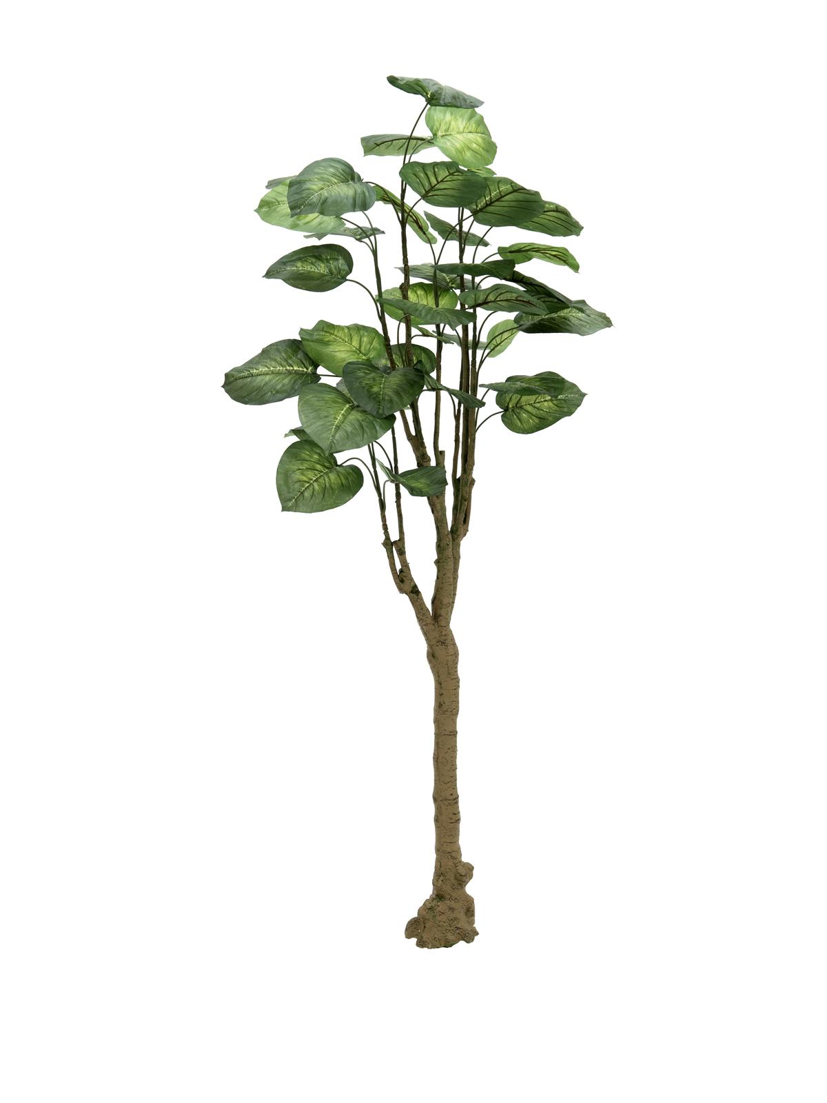 EUROPALMS Pothosbaum, Kunstpflanze, 175cm