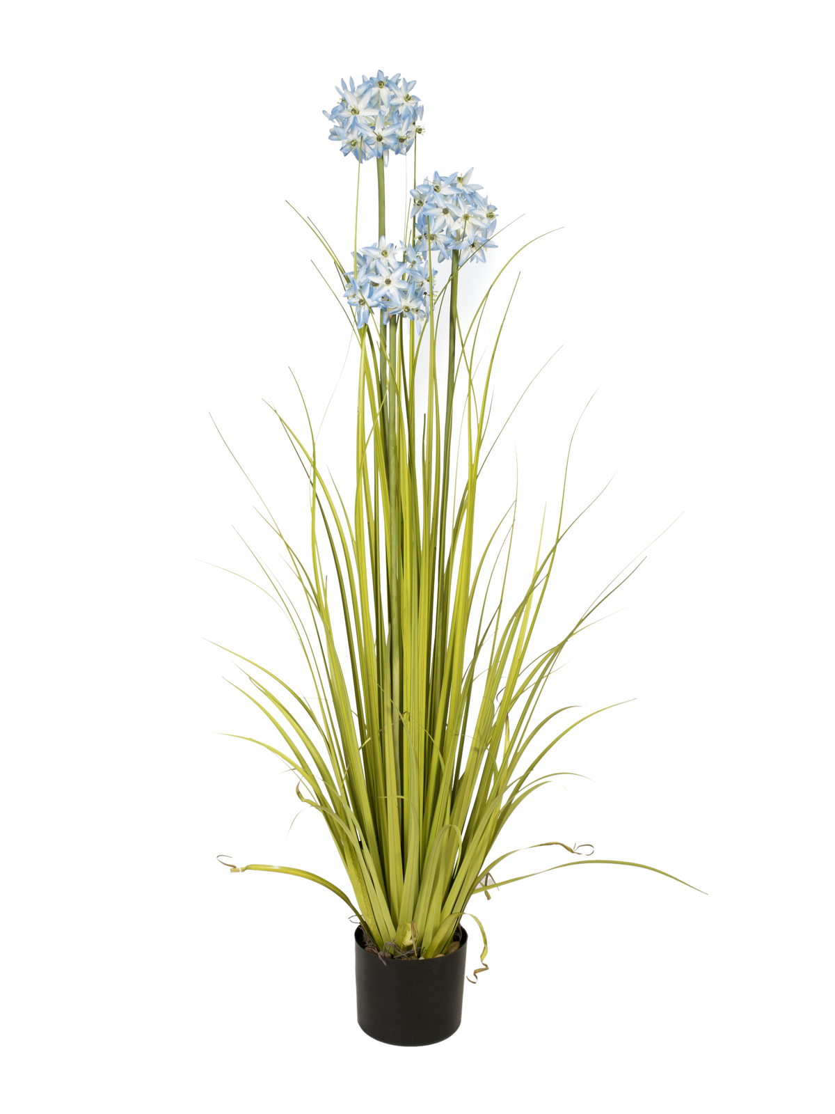 EUROPALMS Alliumgras, Kunstpflanze, blau, 120 cm