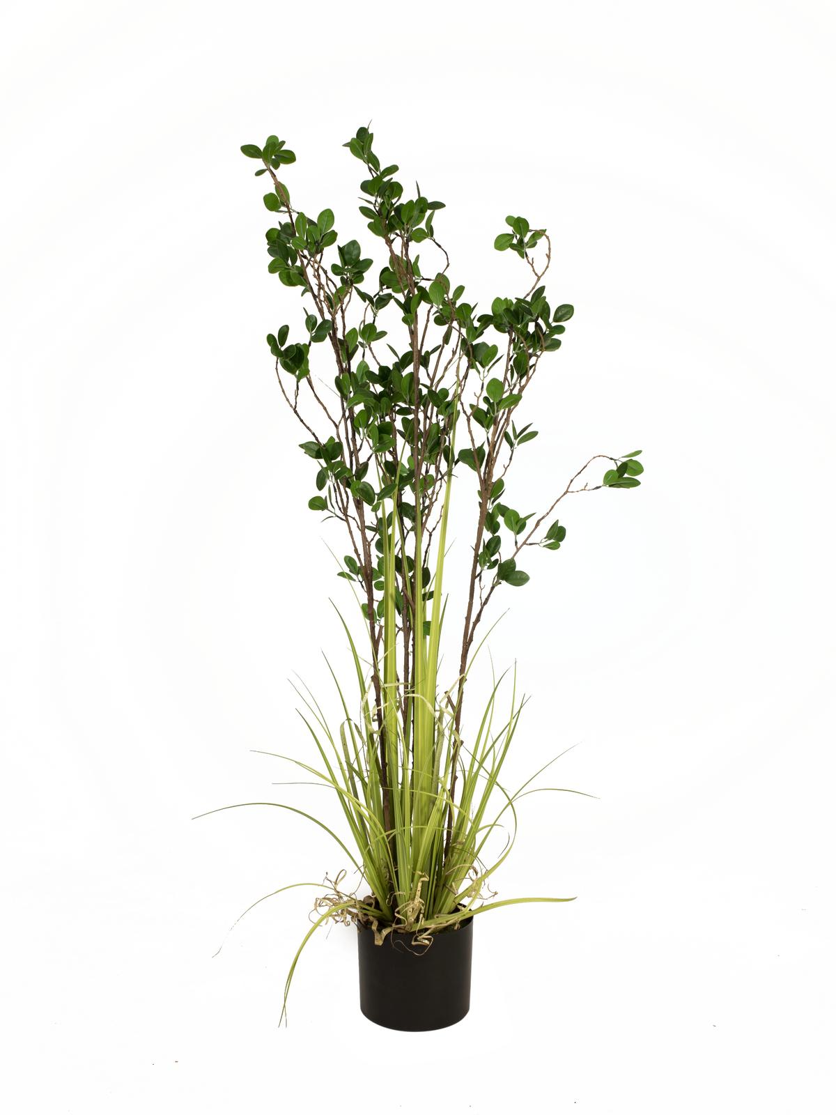 EUROPALMS Immergrünstrauch mit Gras, Kunstpflanze, 120 cm