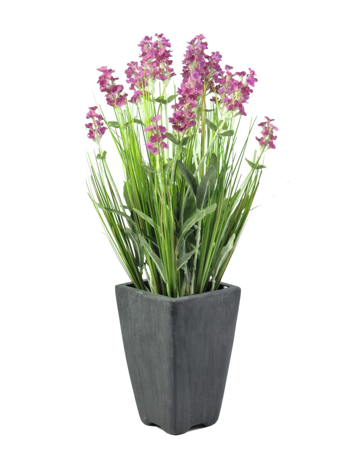 EUROPALMS Lavendel, kunstpflanze, rosé, im Dekotopf, 45cm
