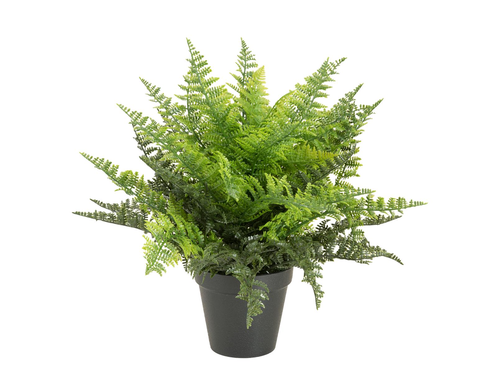 EUROPALMS Farnbusch im Dekotopf, Kunstpflanze, 51 Blätter, 48cm