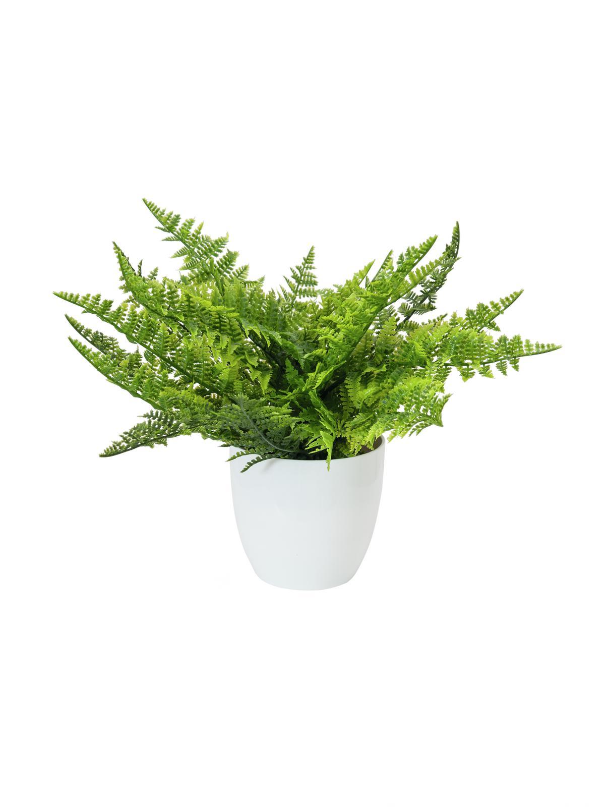 EUROPALMS Farnbusch im Dekotopf, Kunstpflanze, 22 Blätter, 33cm