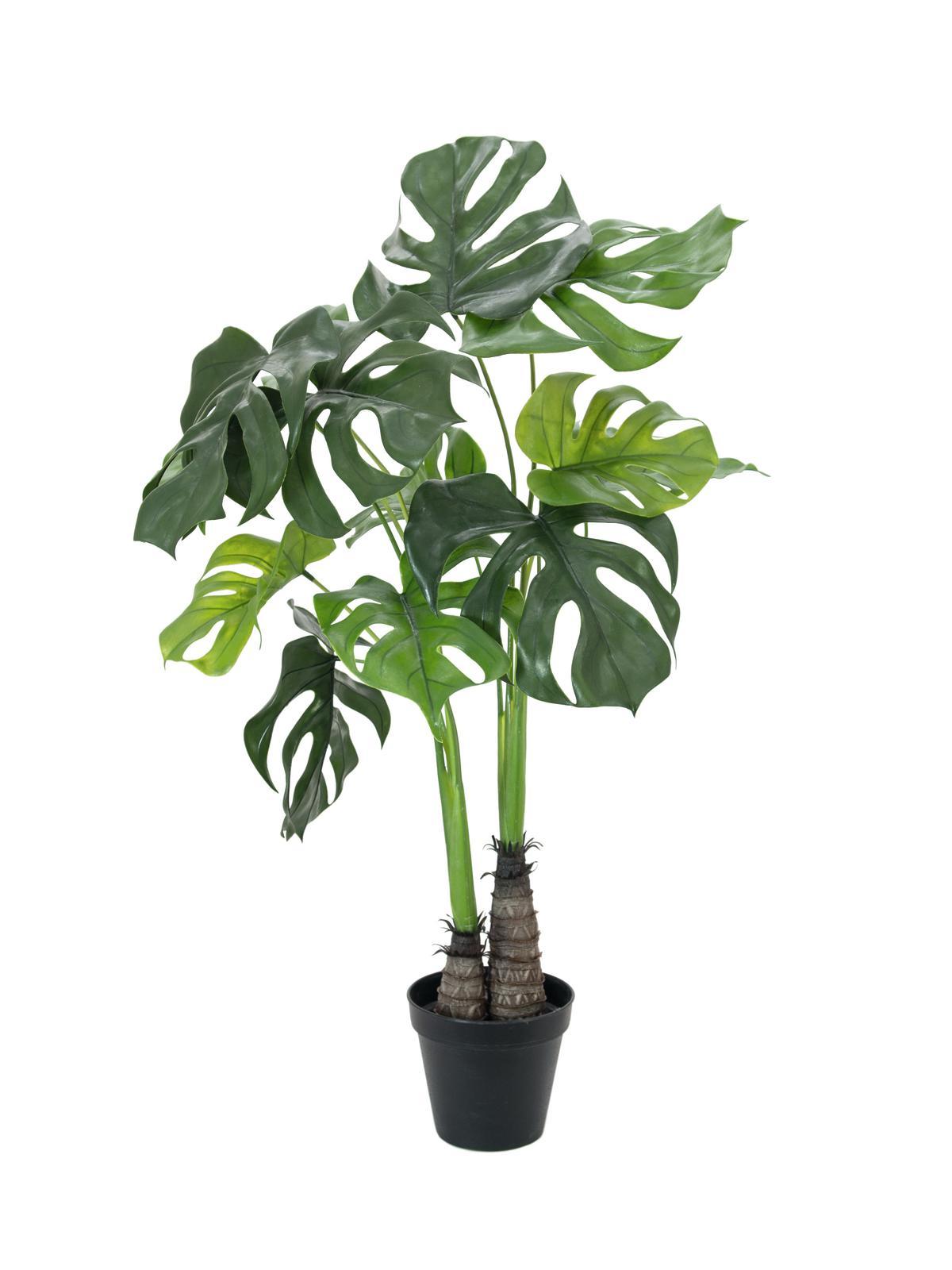 EUROPALMS Monstera deliciosa, Kunstpflanze, 90cm