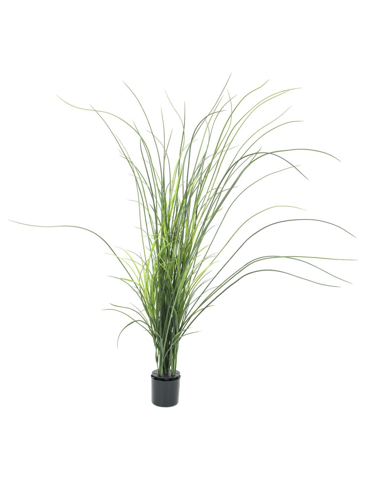 Pianta Artificiale In Plastica Erba reed Grass 145 Cm Europalms