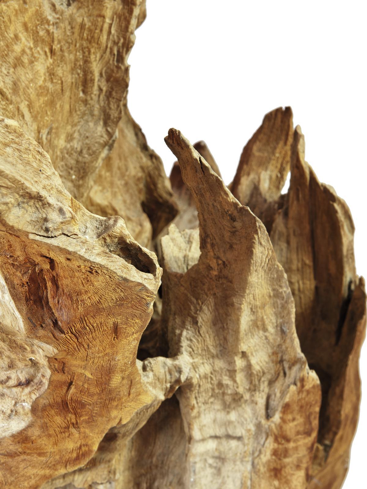 EUROPALMS Naturale scultura in legno 60cm