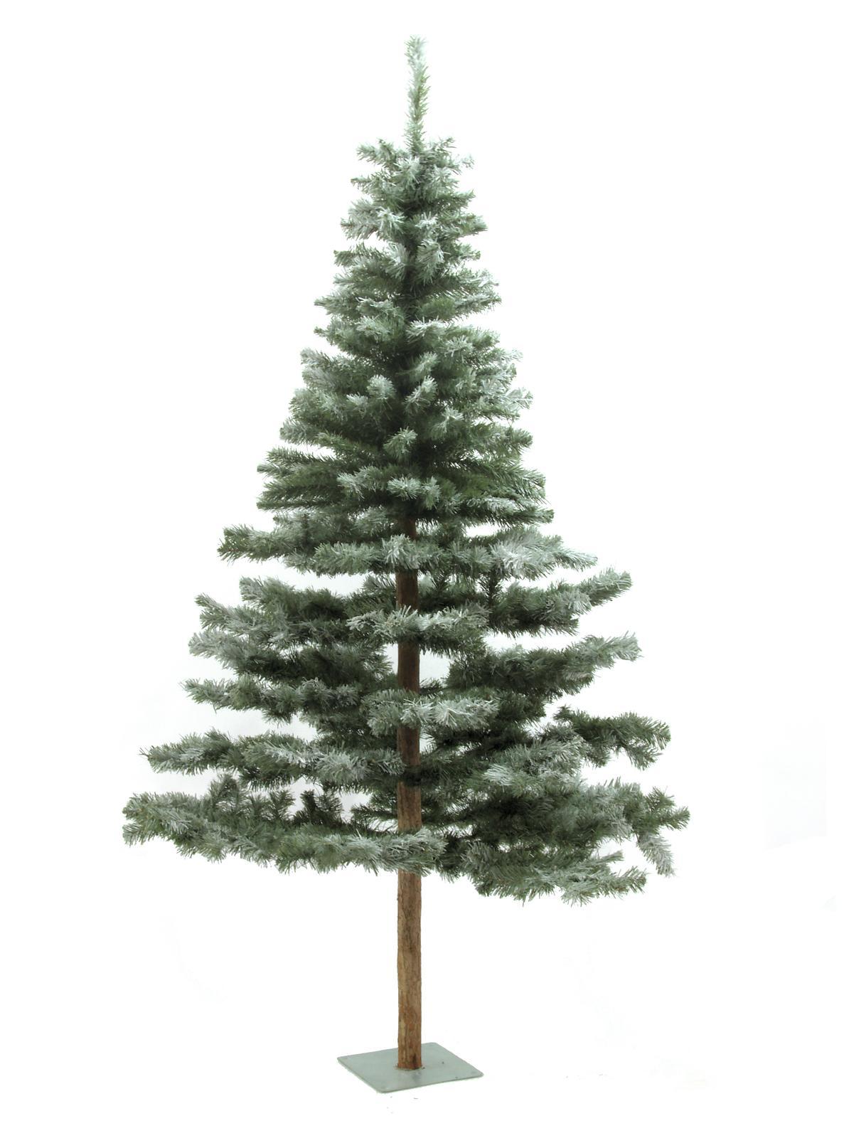 EUROPALMS Abete, neve, accorsi, 180cm