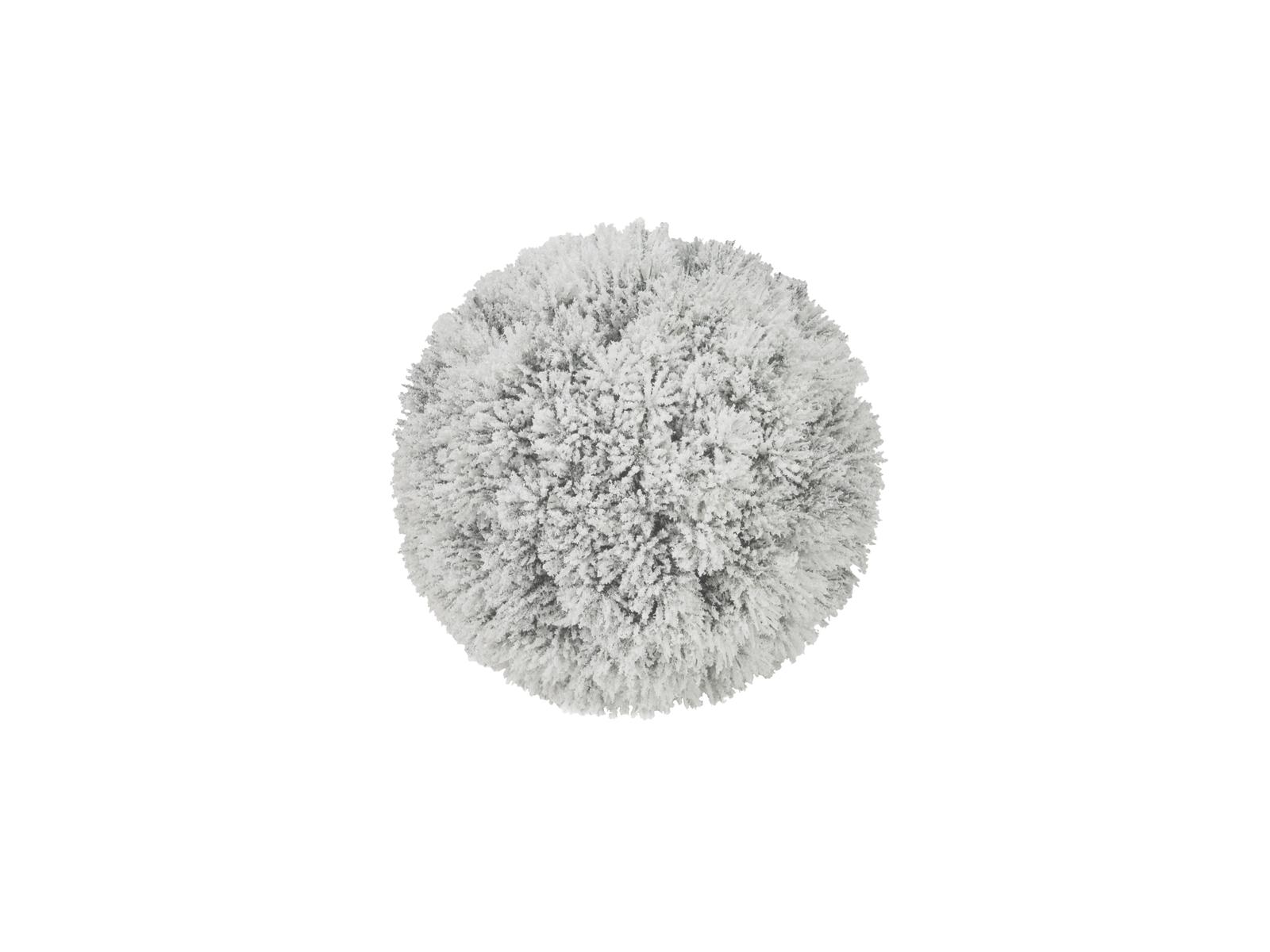 EUROPALMS di Pino, palla, accorsi, 20cm