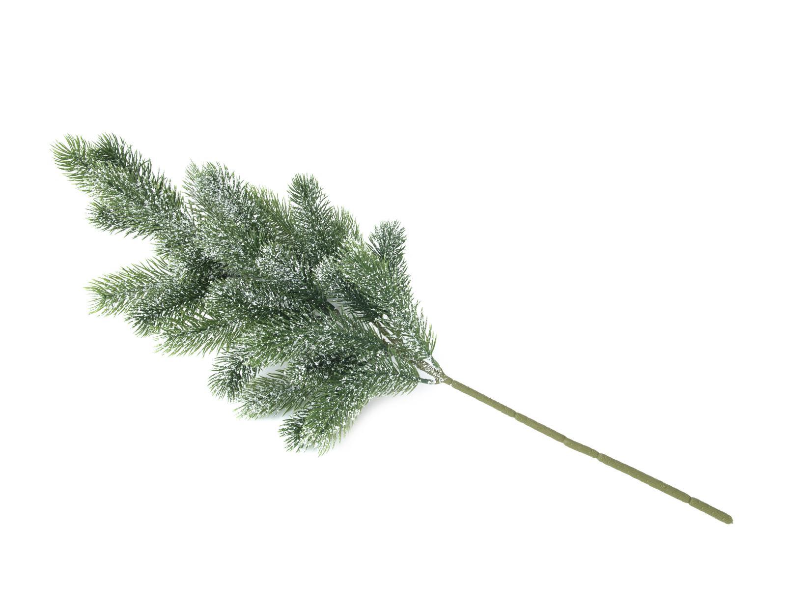 EUROPALMS di Abete, ramo, nevoso, PE, 65cm