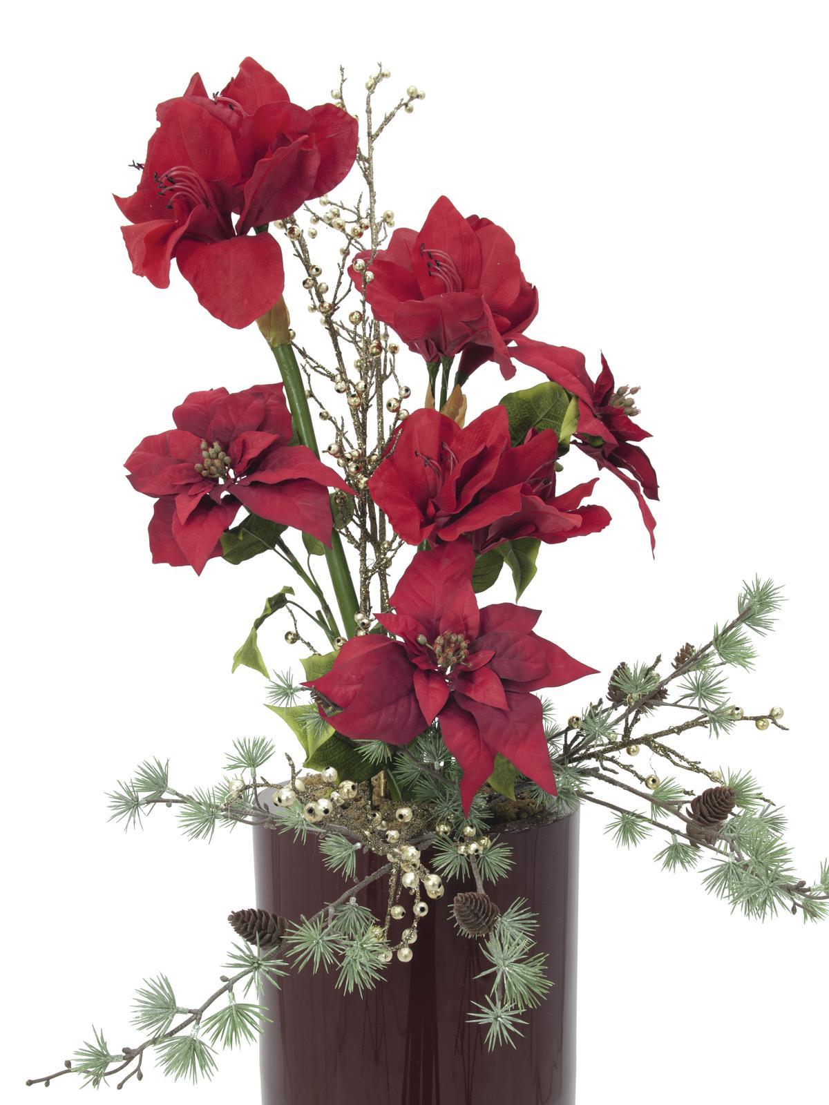 EUROPALMS Poinsettia bush, rosso, 60 cm