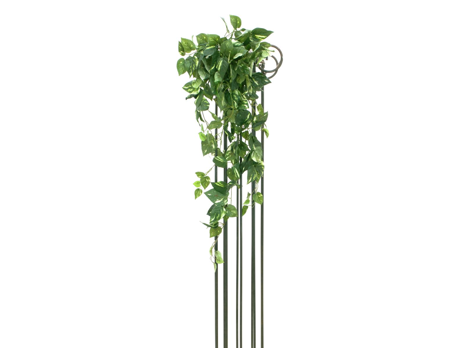 EUROPALMS Pothos bush ghirlanda MAXI, 90cm