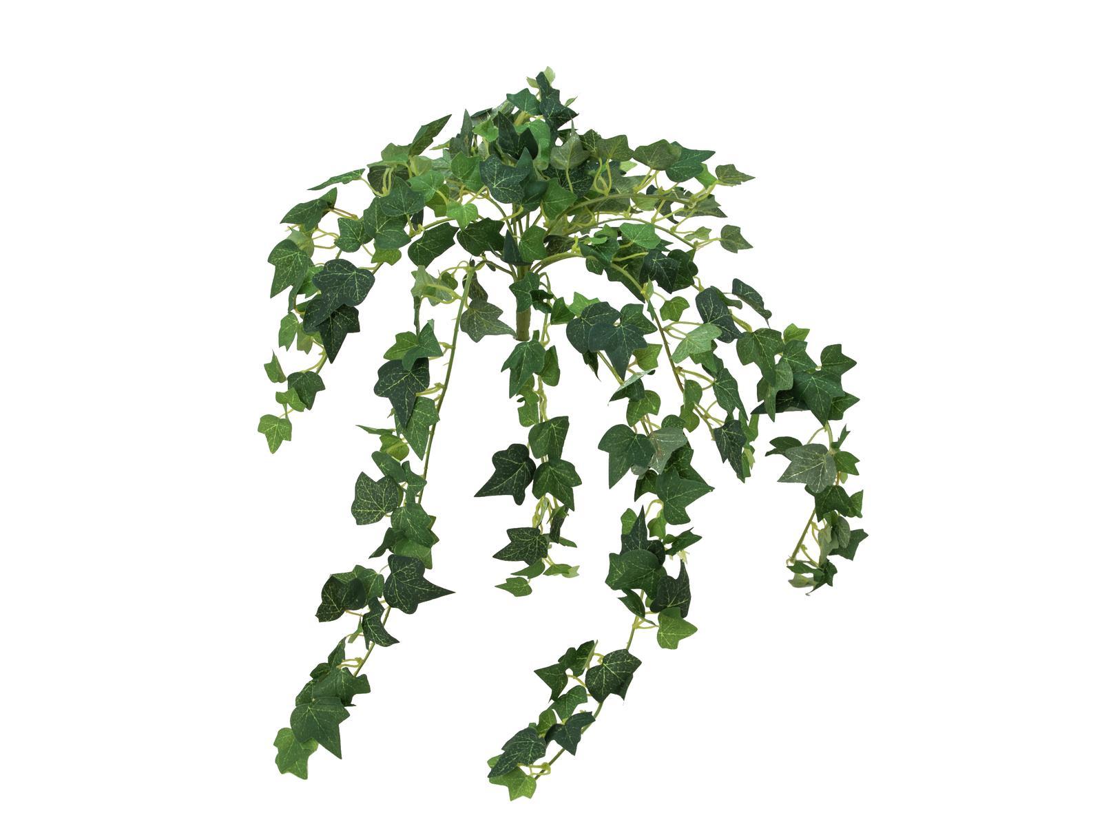 EUROPALMS pianta artificiale edera rampicante  Ivy 50 cm