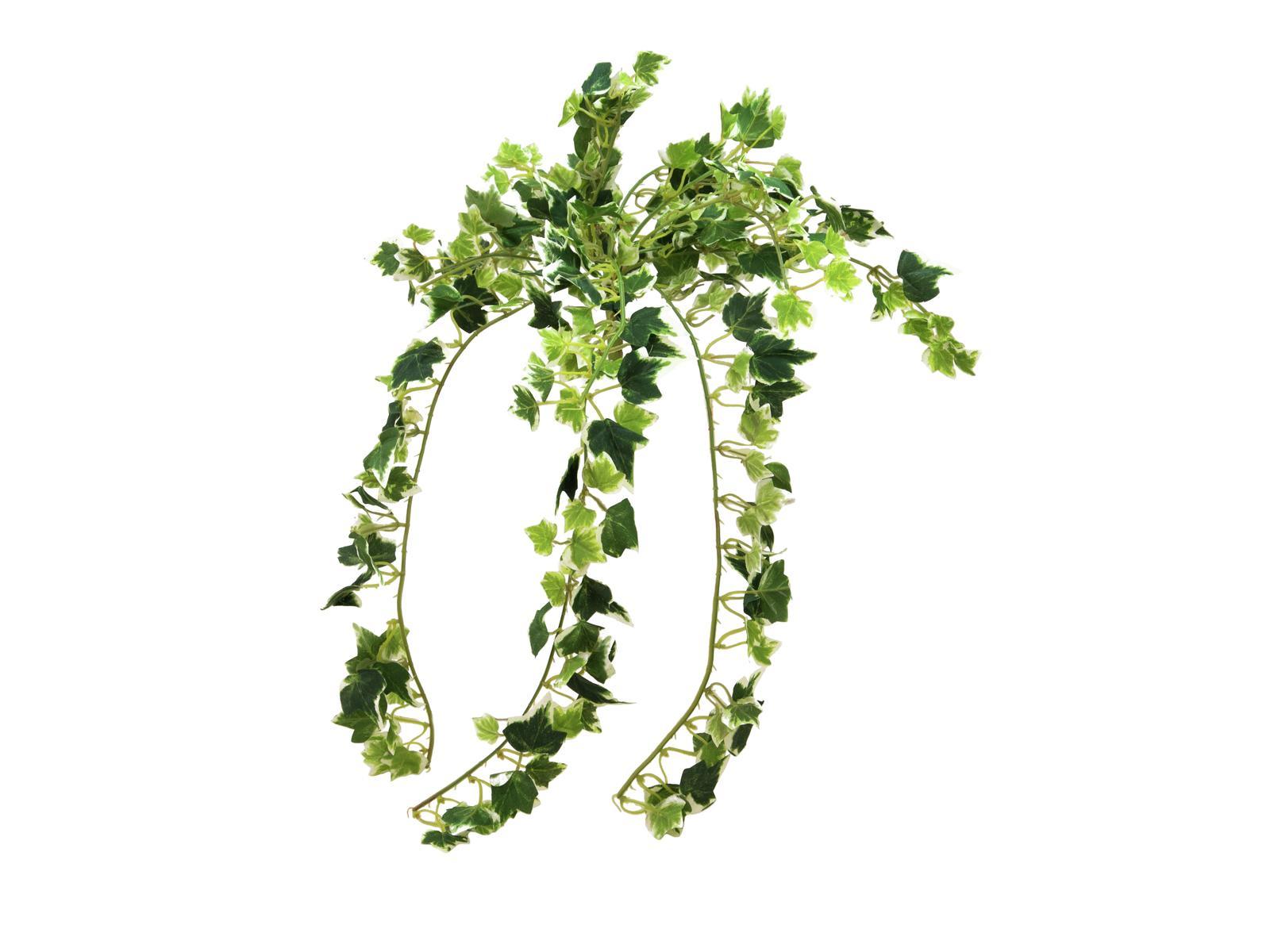 EUROPALMS pianta artificiale edera rampicante olanda  Ivy 50 cm