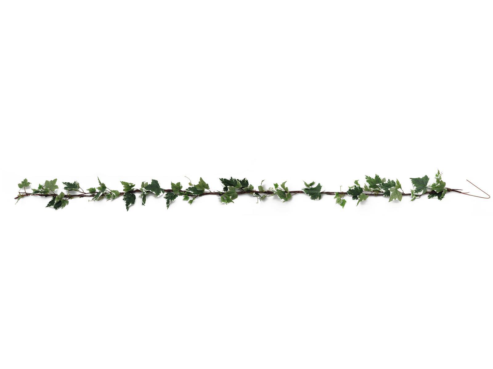 EUROPALMS ghirlanda di Edera, verde-bianco, 350cm