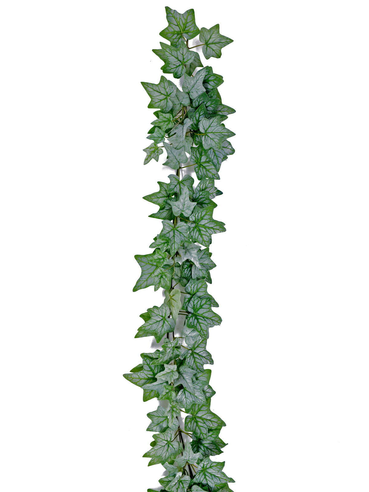 EUROPALMS Efeugirlande dicht, künstlich, grün, 180cm