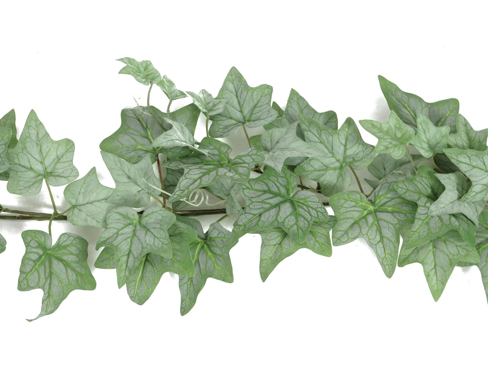 EUROPALMS ghirlanda di Edera, verde, 180cm