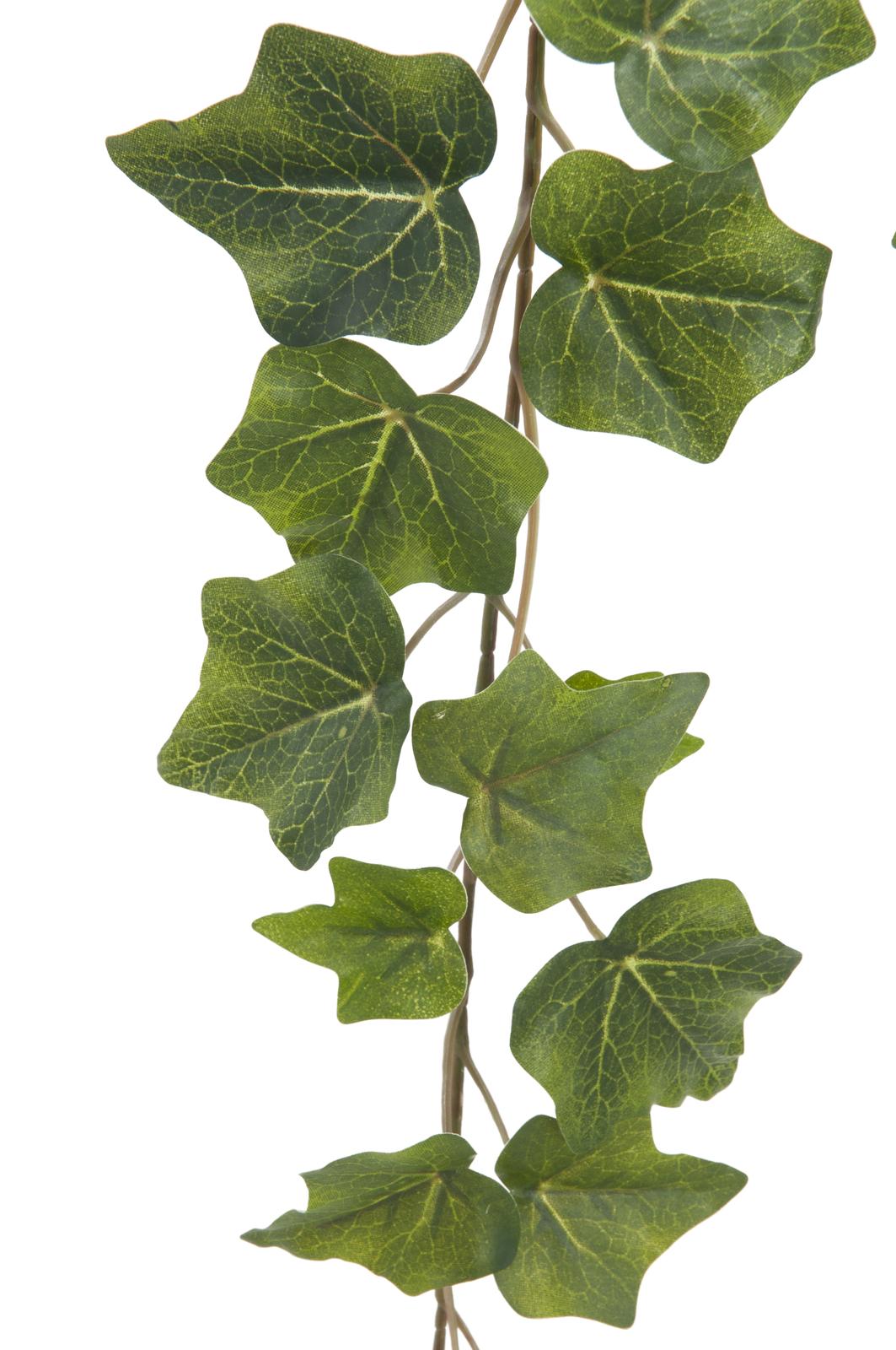 EUROPALMS Ivy garland in rilievo verde 81cm