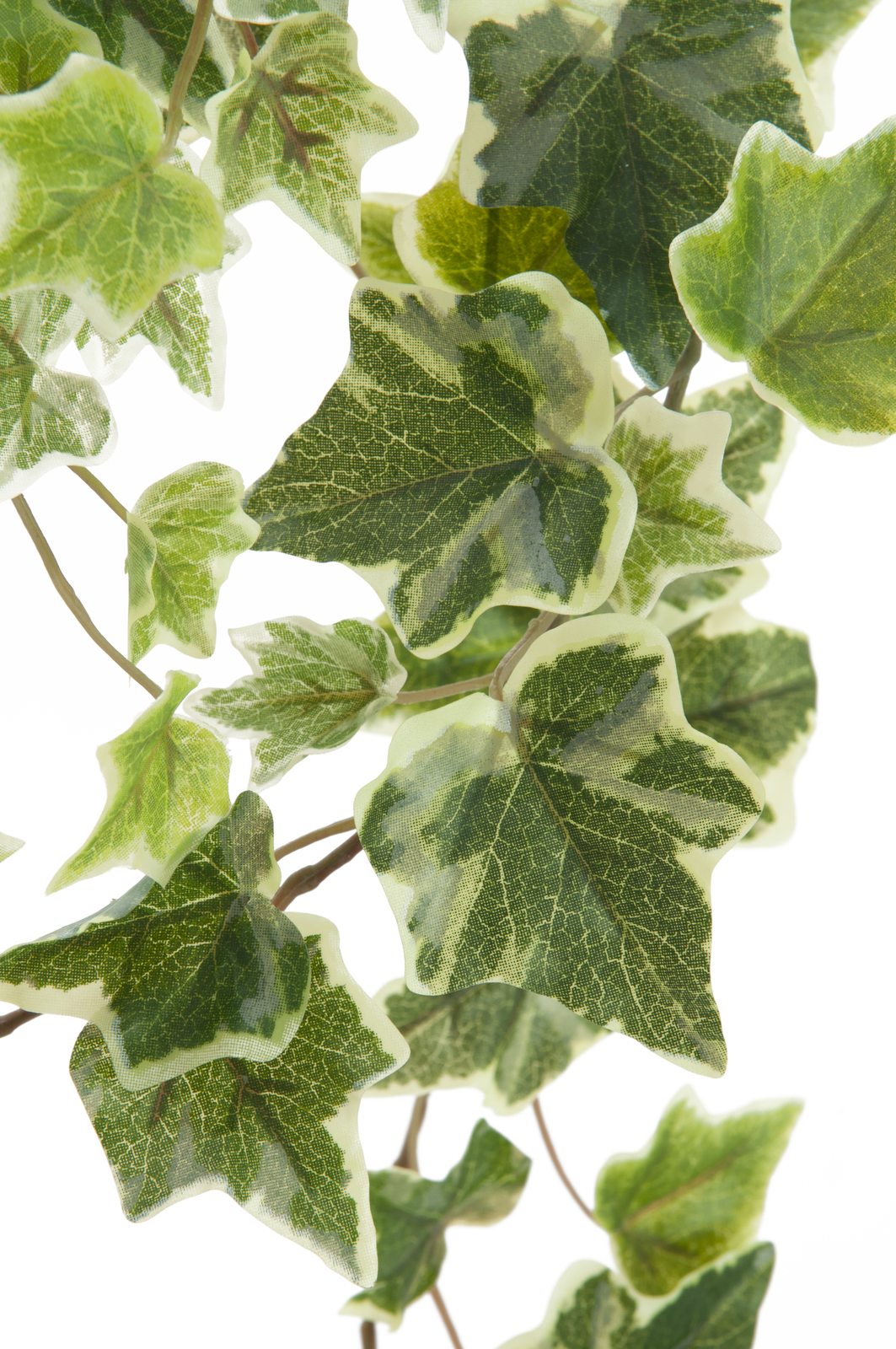 EUROPALMS Olanda Ivy garland in rilievo 86cm