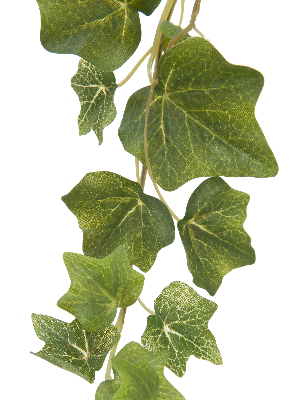 EUROPALMS Ivy garland in rilievo verde 183cm