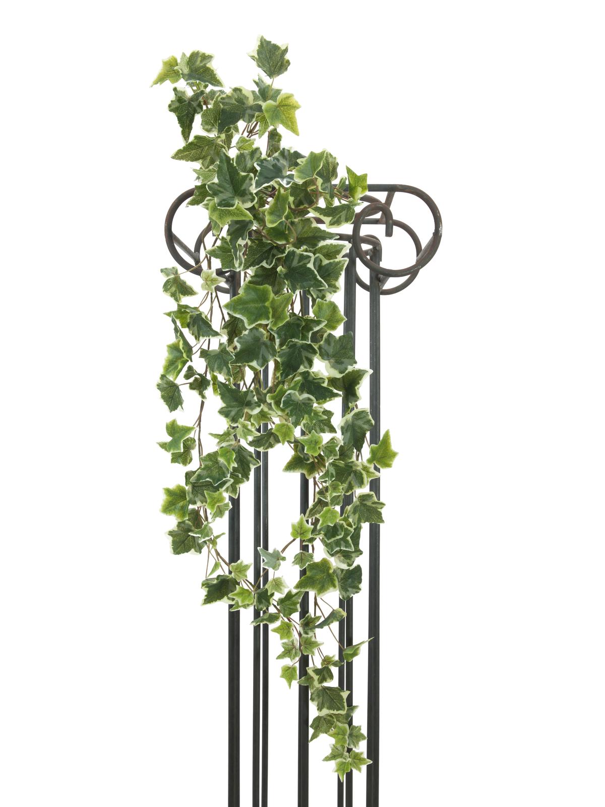 EUROPALMS Olanda Ivy garland in rilievo 183cm