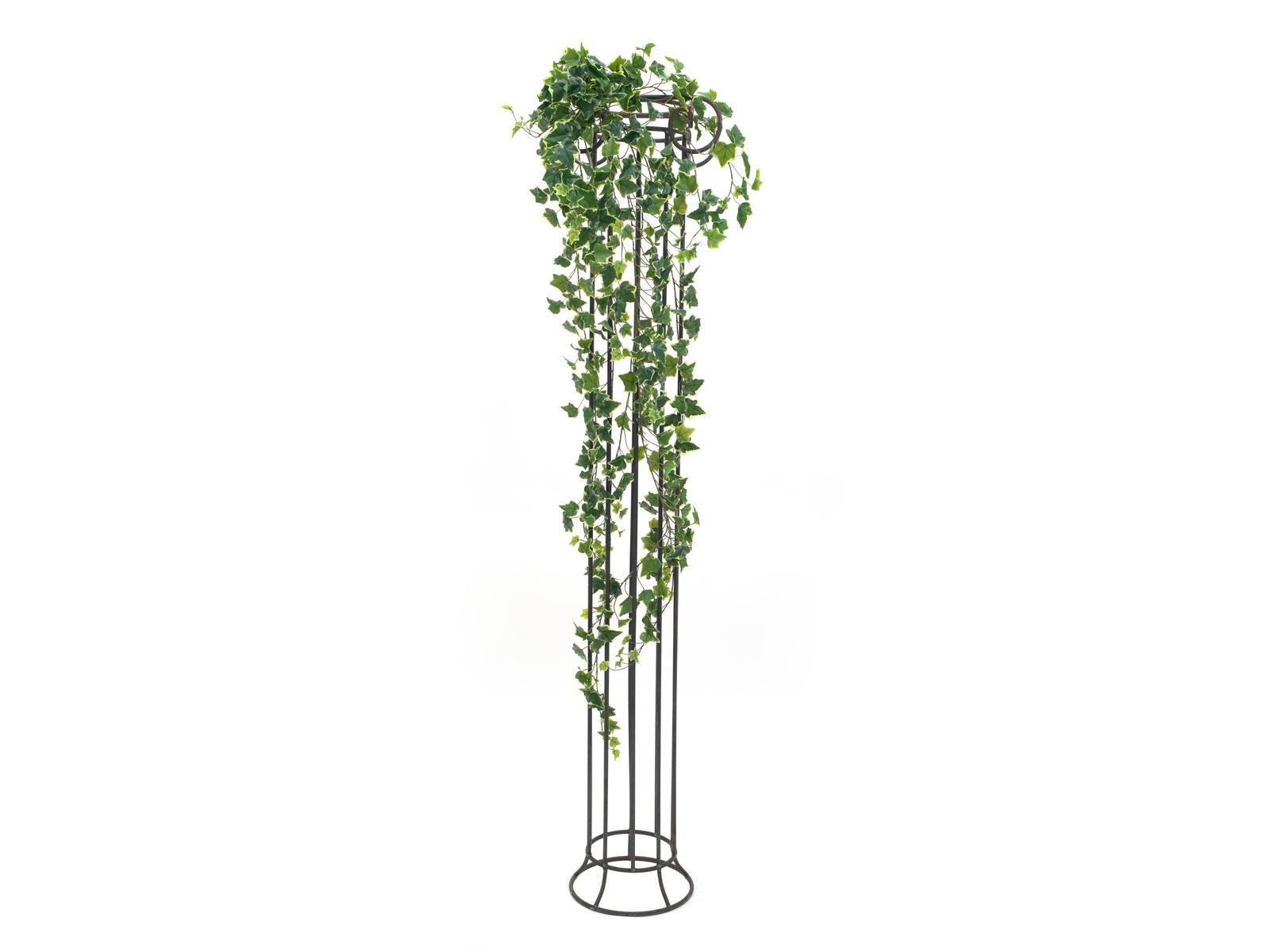 EUROPALMS Hollan Ivy Bush, Premium, 170cm