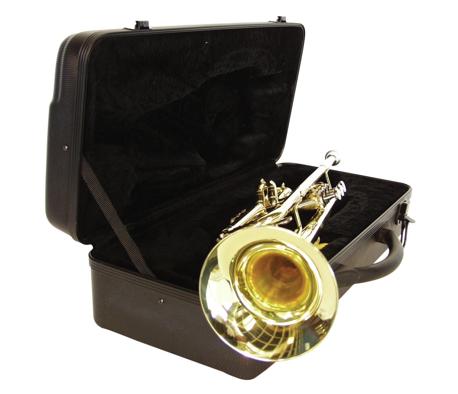Tromba in Sib, color oro,con custodia e accessori, DIMAVERY TP-10