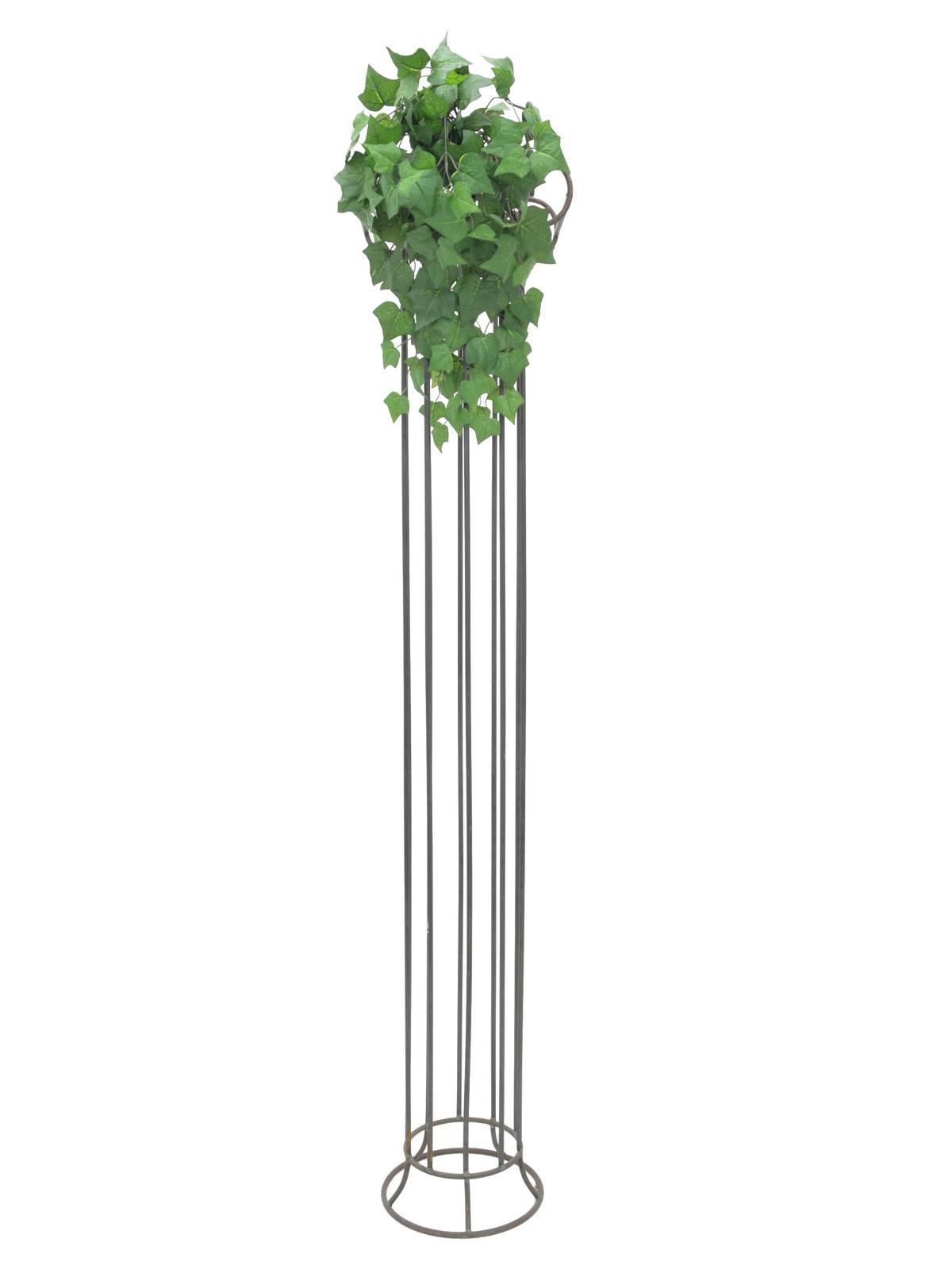 EUROPALMS Ivy bush, 60cm