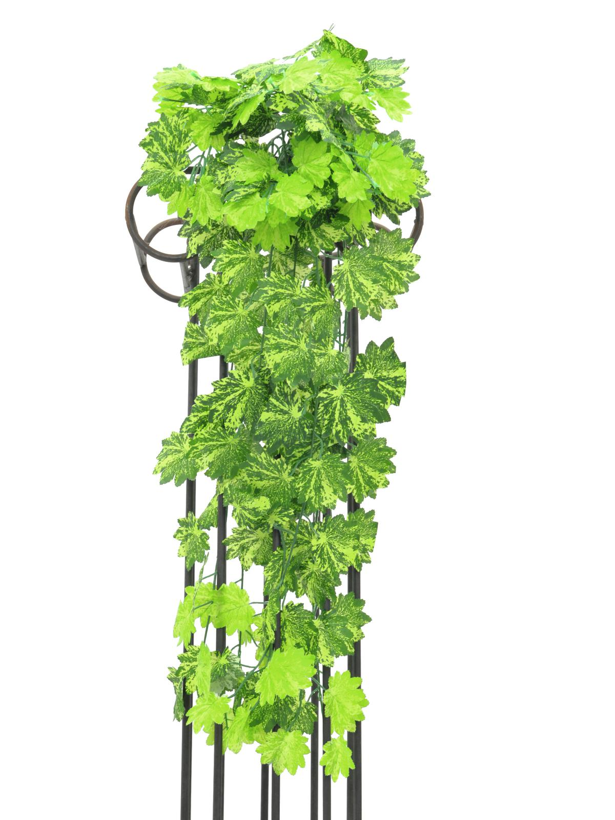 EUROPALMS Maple bush, 60cm