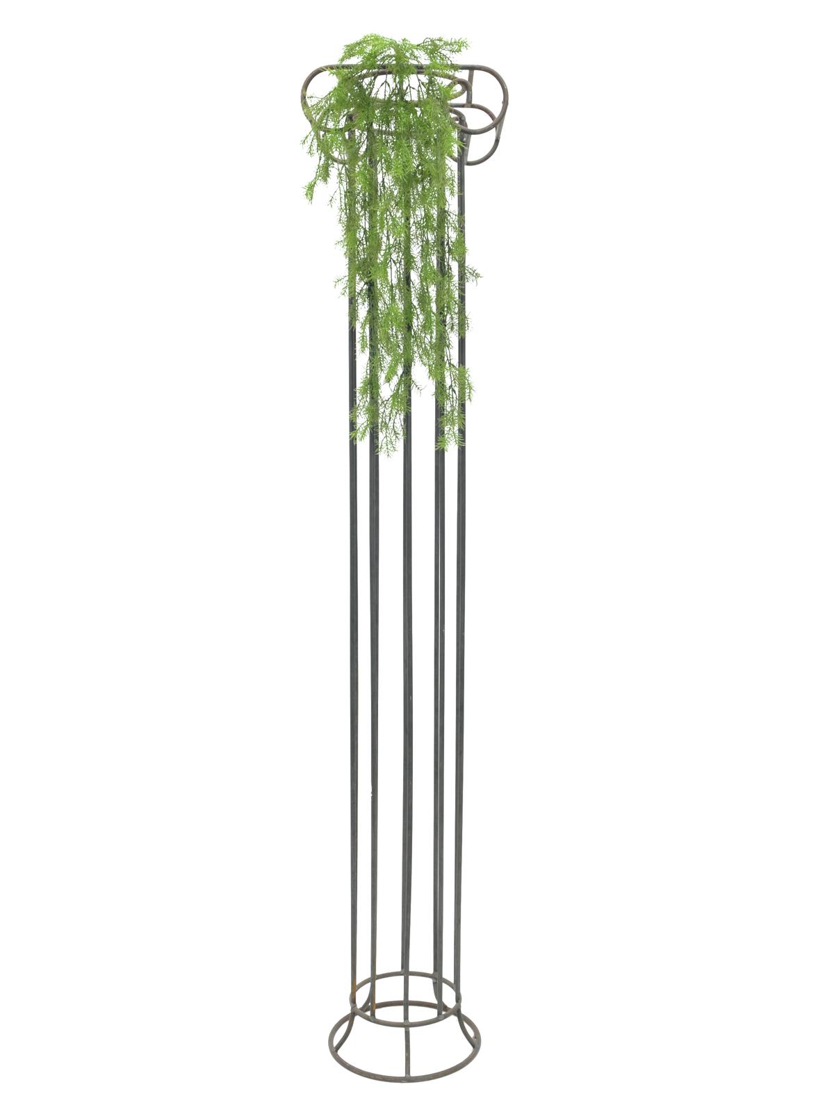 EUROPALMS Coralgras bush, 78cm