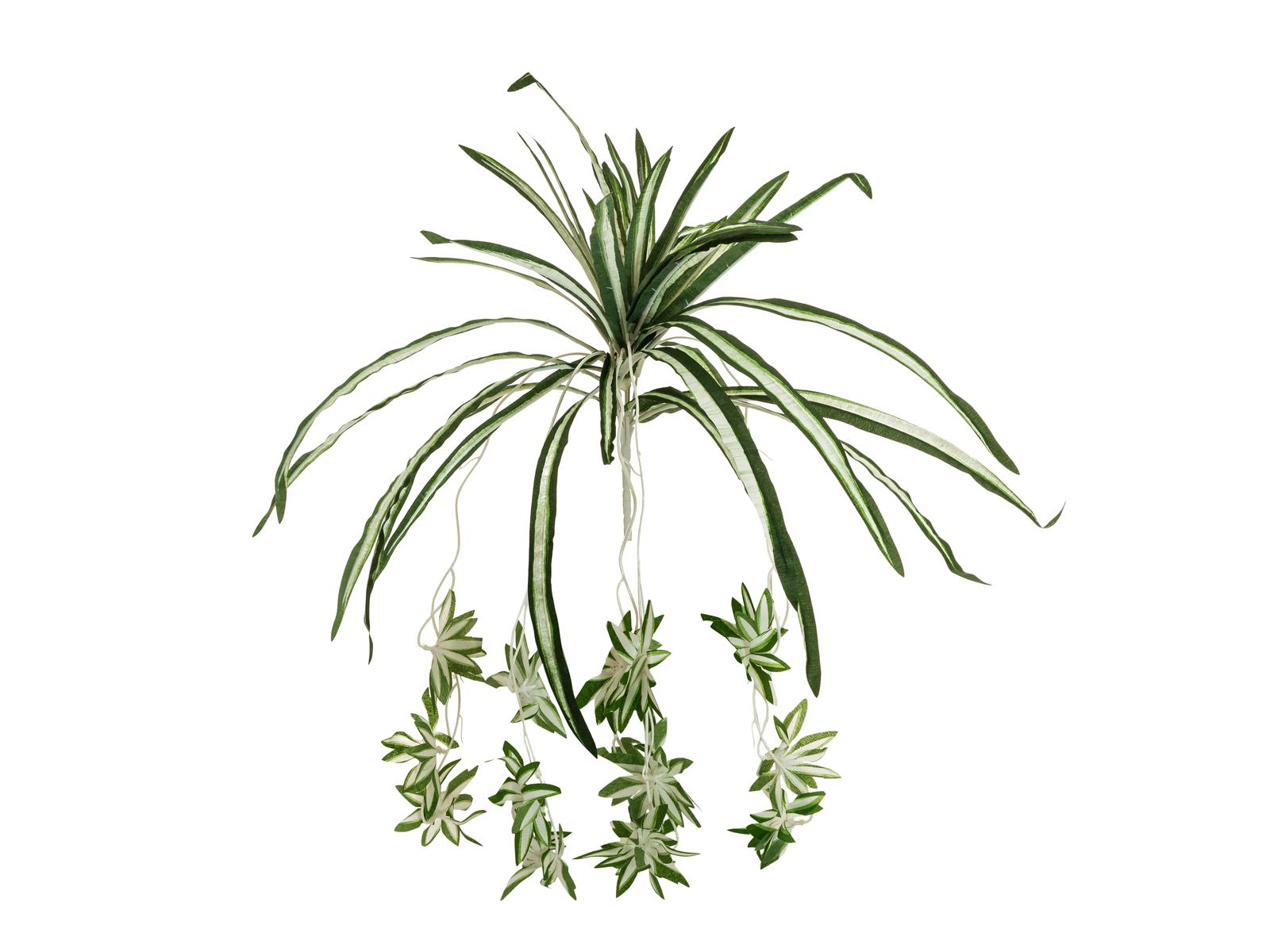 Pianta Artificiale Arbusto Nastrino Falangio Altezza 60CM EUROPALMS Spider