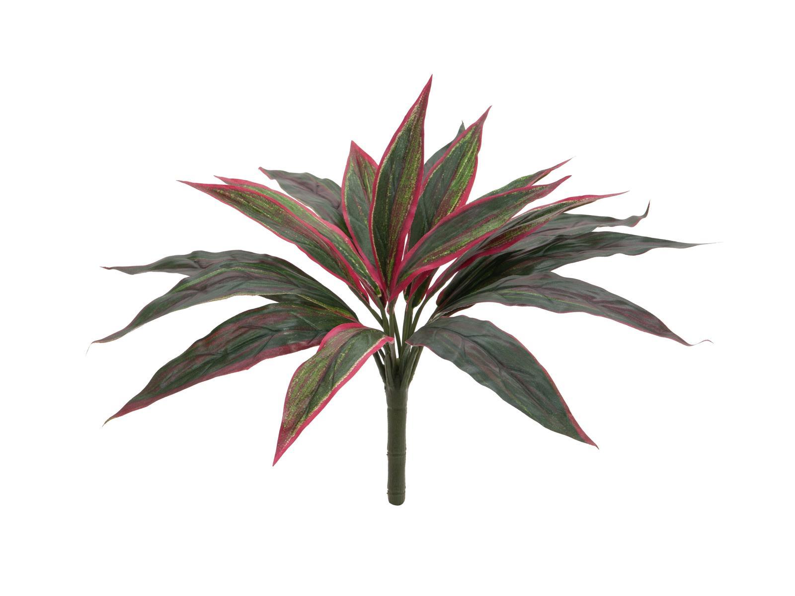 EUROPALMS pianta artificiale Dracena, rosso-verde, 27cm