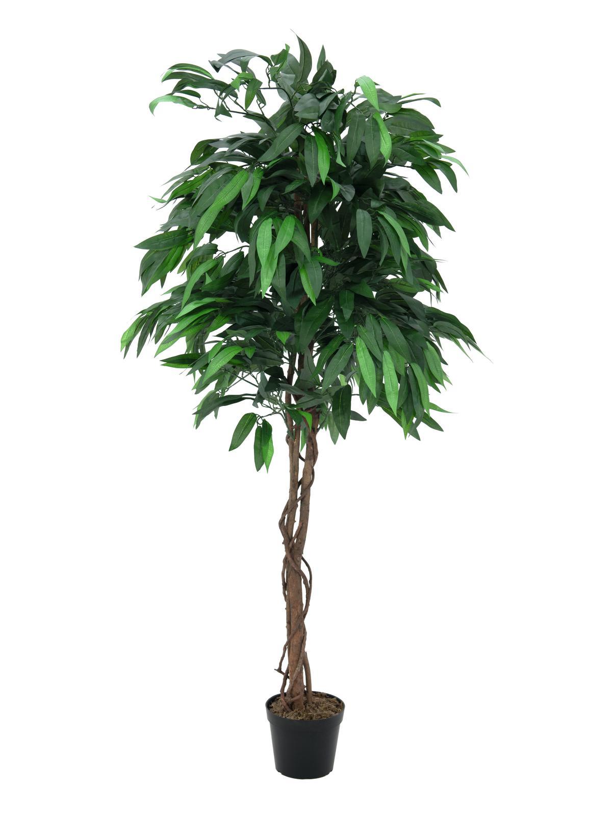 EUROPALMS Dschungelbaum Mango, Kunstpflanze, 180cm