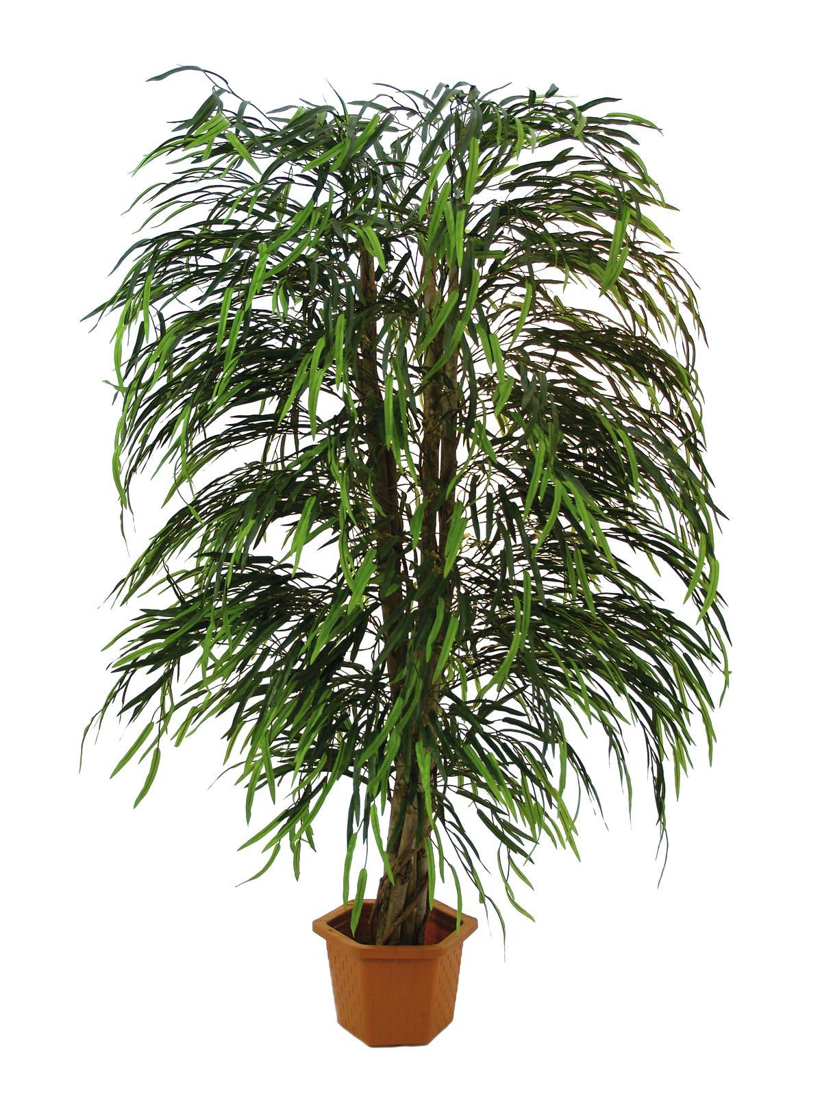 EUROPALMS albero di Salice multi foglia, 215 cm