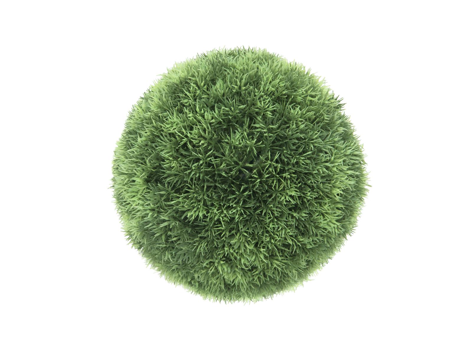 EUROPALMS Erba, palla, 29cm