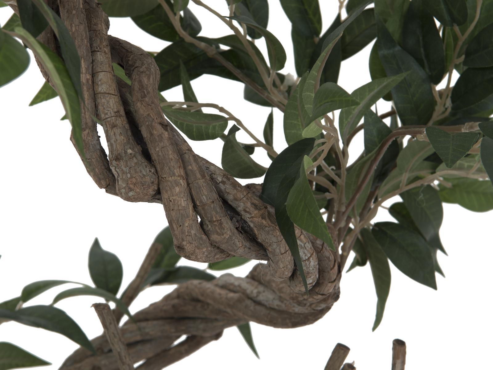 EUROPALMS Ficus più a spirale tronco, 130cm