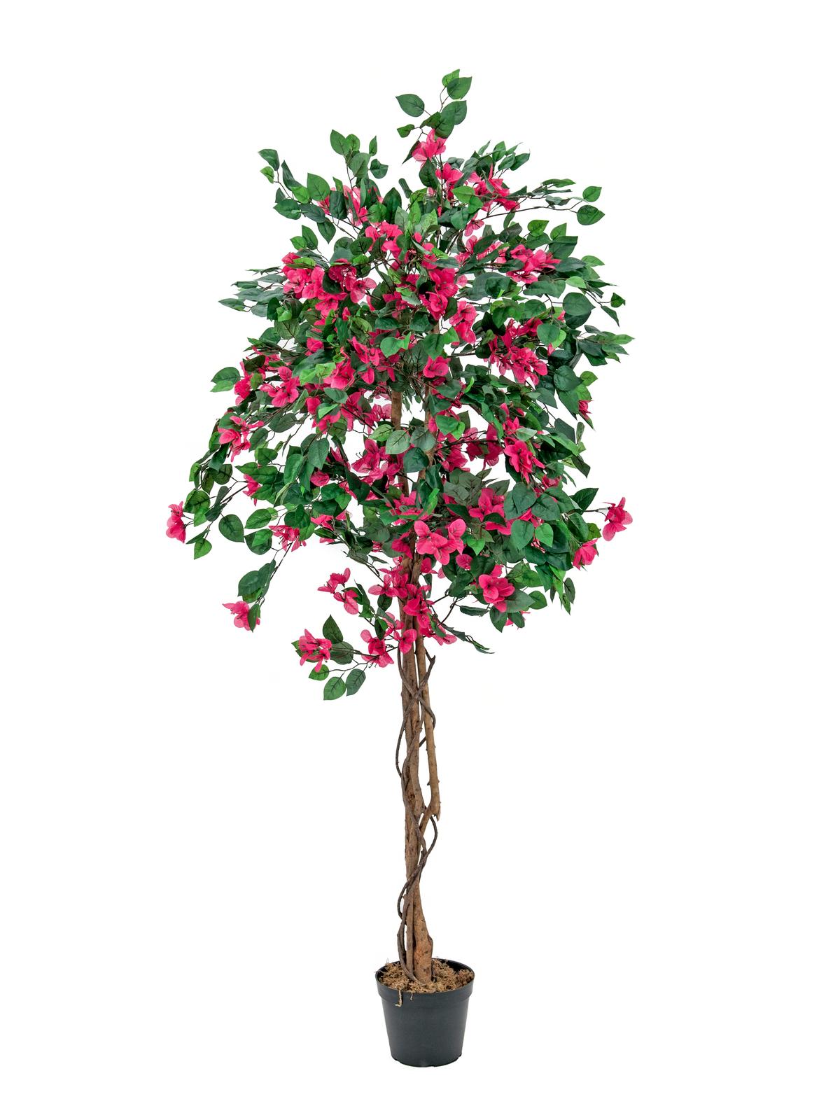 EUROPALMS Bougainvillea, Kunstpflanze, rot, 150cm