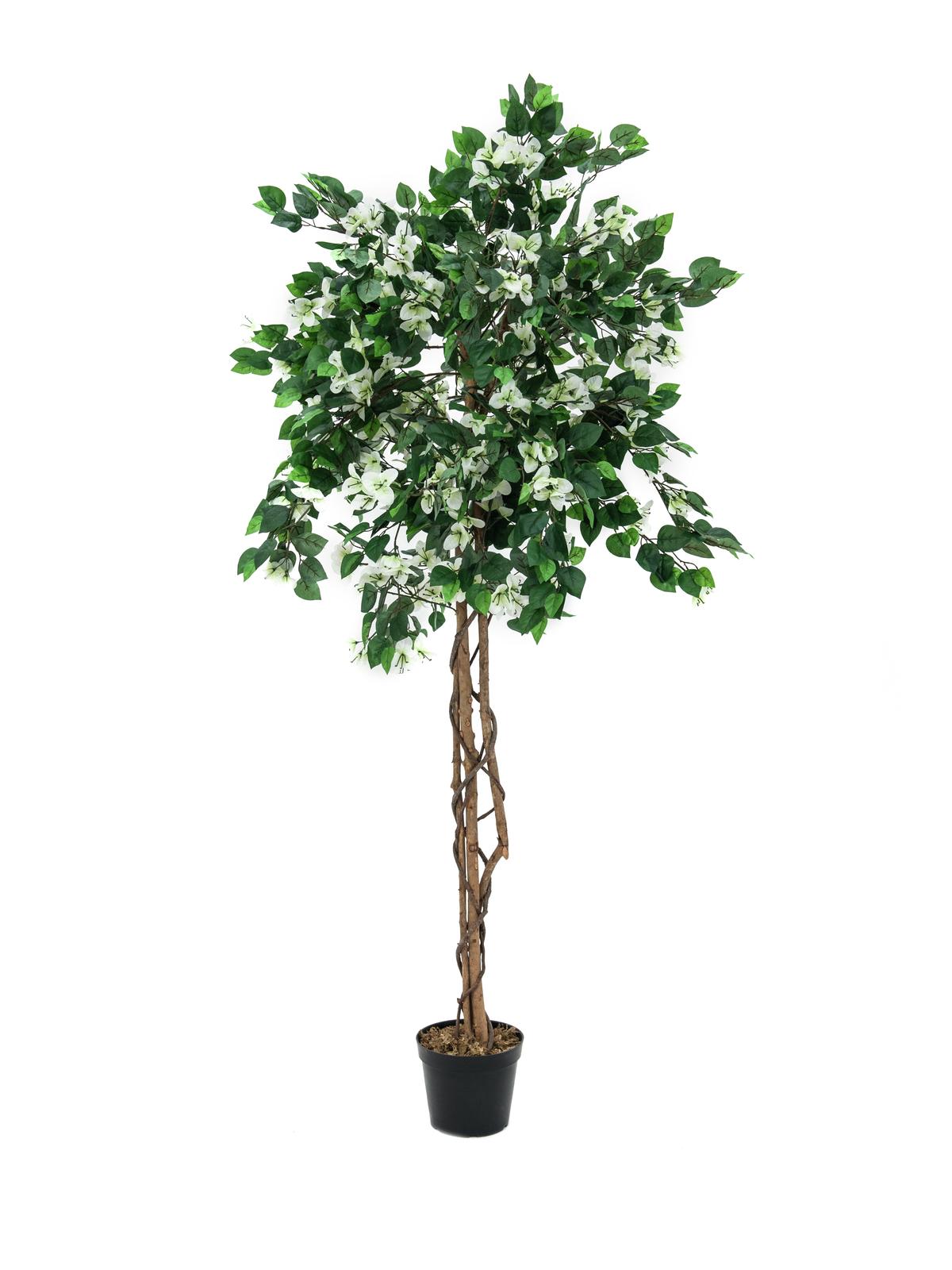 EUROPALMS Bougainvillea, Kunstpflanze, weiß, 150cm