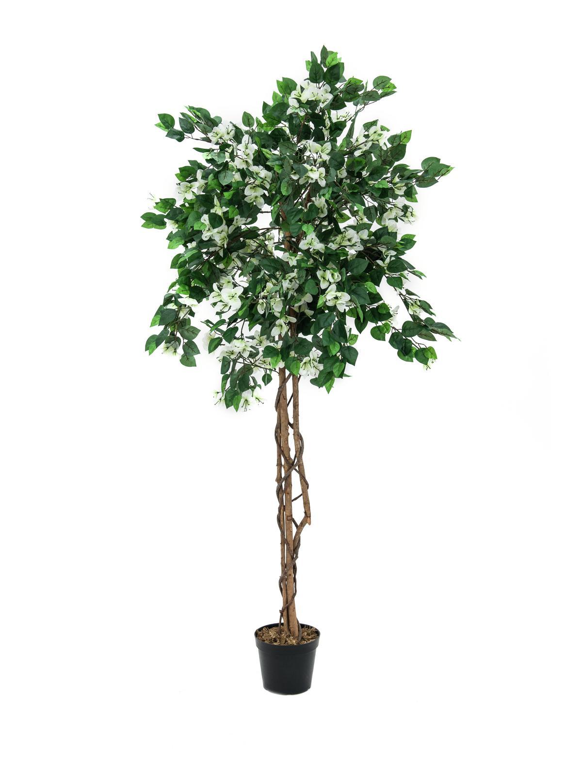 EUROPALMS Bougainvillea, Kunstpflanze, weiß, 180cm