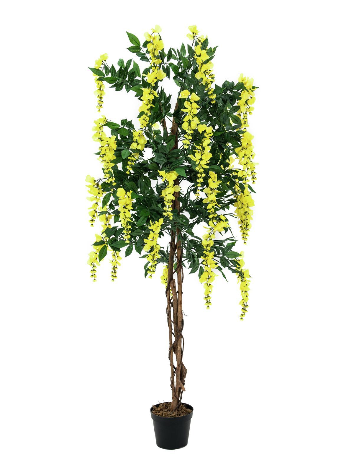 EUROPALMS Goldregenbaum, Kunstpflanze, gelb, 150cm