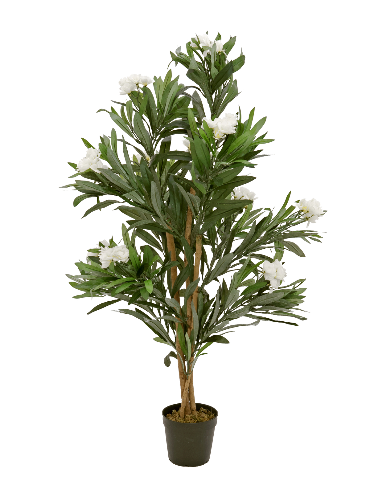 EUROPALMS Oleanderbaum, Kunstpflanze, weiß, 120 cm