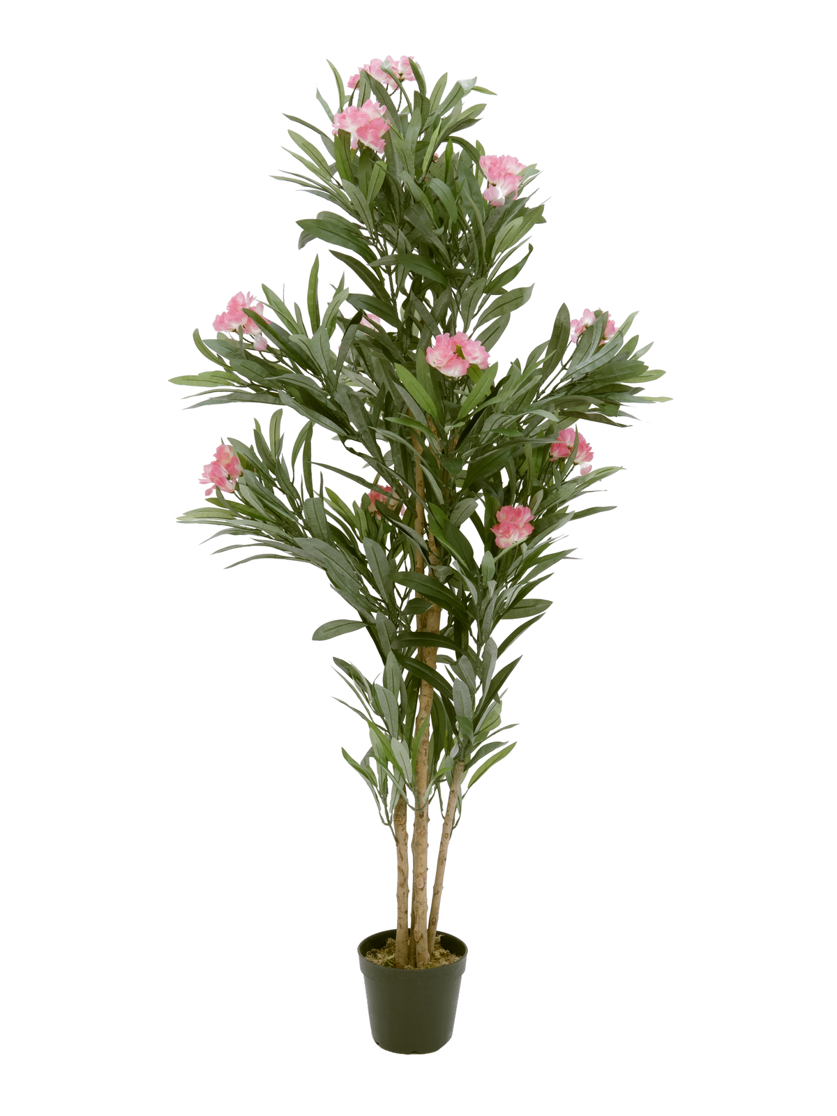 EUROPALMS Oleanderbaum, Kunstpflanze, rosa, 150 cm