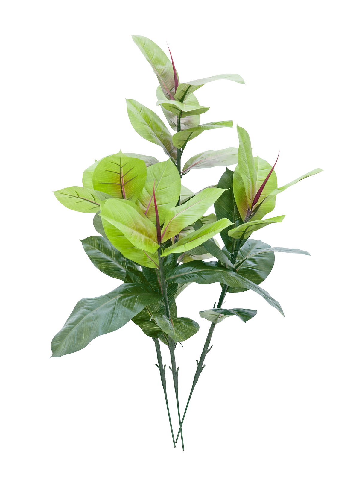 EUROPALMS Gummibaum, Kunstpflanze, 100cm