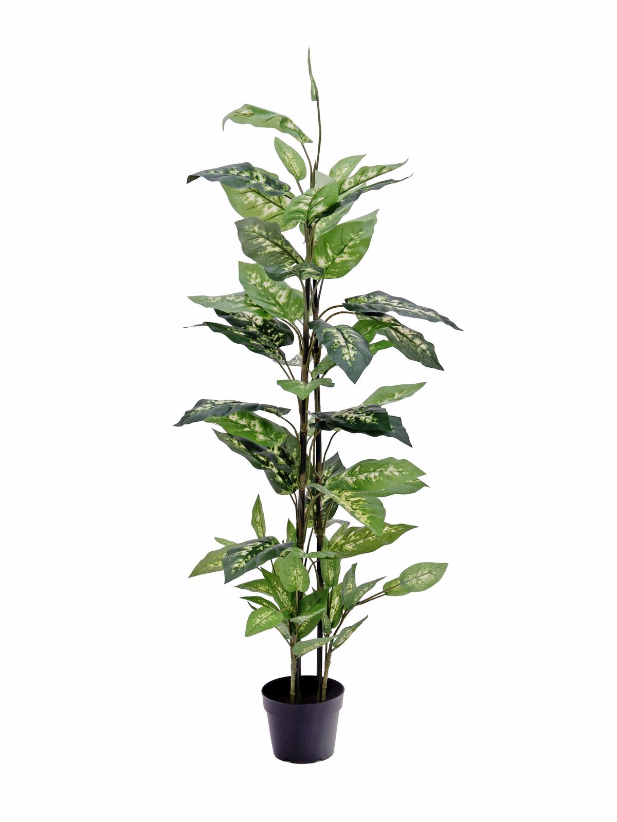 EUROPALMS pianta artificiale Dieffenbachia da ufficio, 120cm