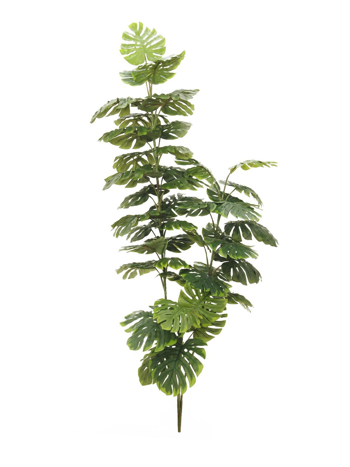 EUROPALMS pianta artificiale Split philo, 3 tronchi, 150cm