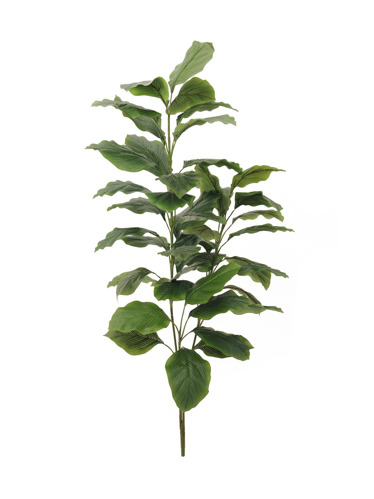 EUROPALMS pianta artificiale Sempreverde, 3 rami, 150cm